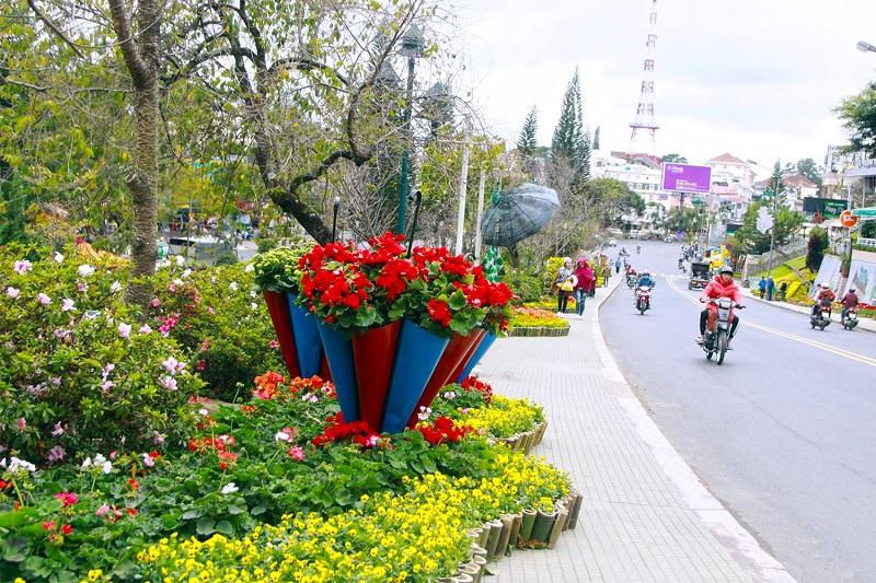 Con đường hoa dẫn đến Festival hoa Đà Lạt 2019