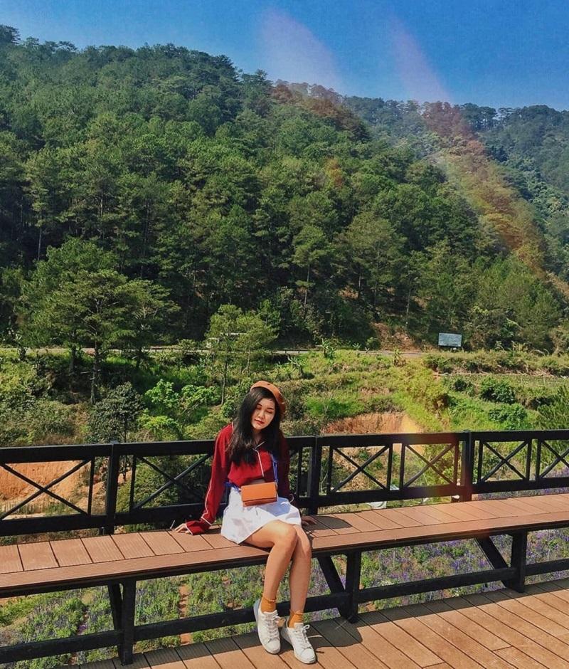 Chụp hình với khung cảnh nên thơ ở thung lũng Vàng
