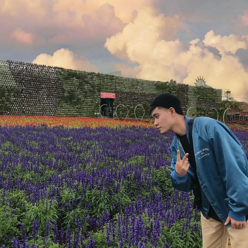 Cánh đồng hoa Lavender ở Fresh Garden