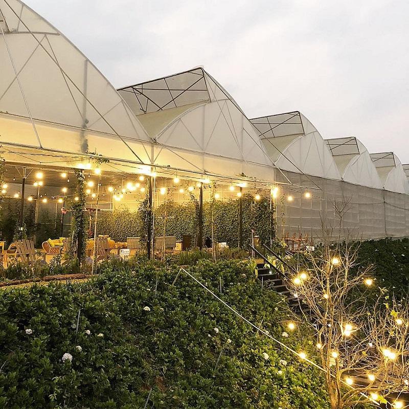 Không gian lung linh, chan hòa với cây cỏ ở cà phê F Đà Lạt