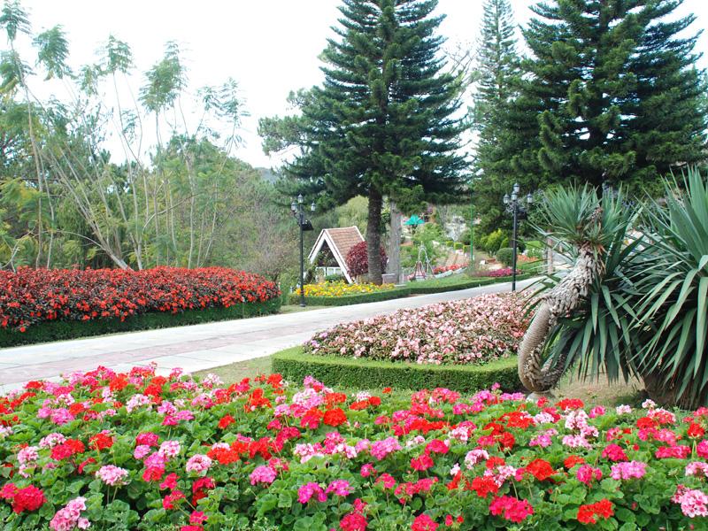 Không gian thoáng đãng, trong lành ở vườn hoa Minh Tâm Đà Lạt