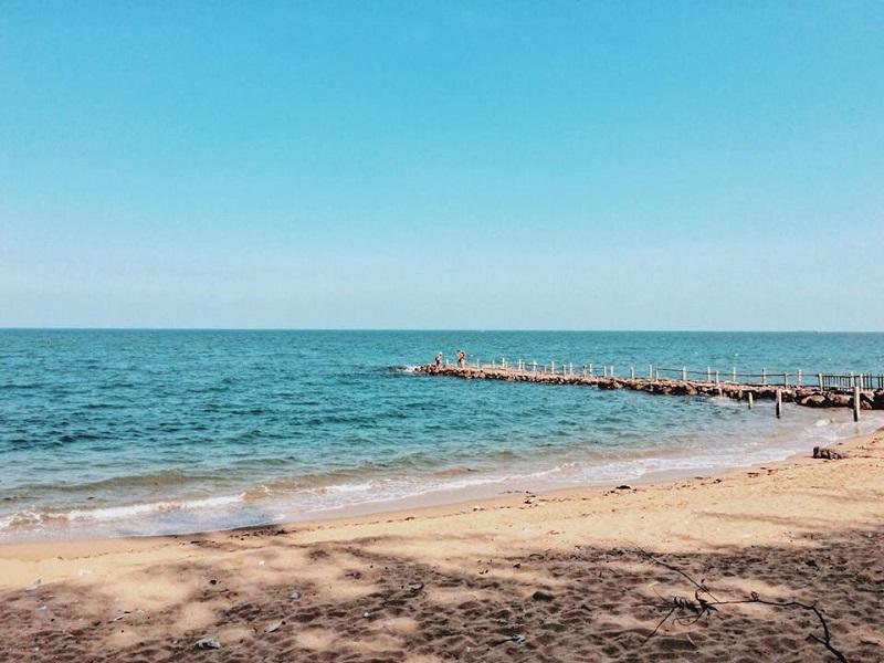 Con đường dẫn ra biển độc đáo ở Bãi Đông Thanh Hóa