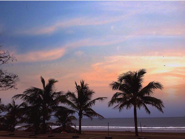 Cảnh hoàng hôn tuyệt đẹp bên bờ biển với những rặng dừa