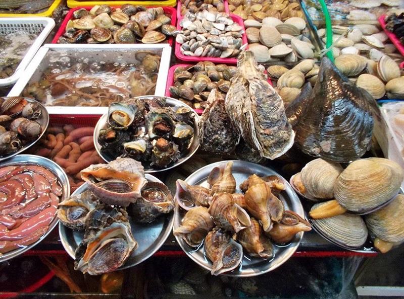 Các loại hải sản tươi ngon được bày bán ở các khu chợ Sầm Sơn