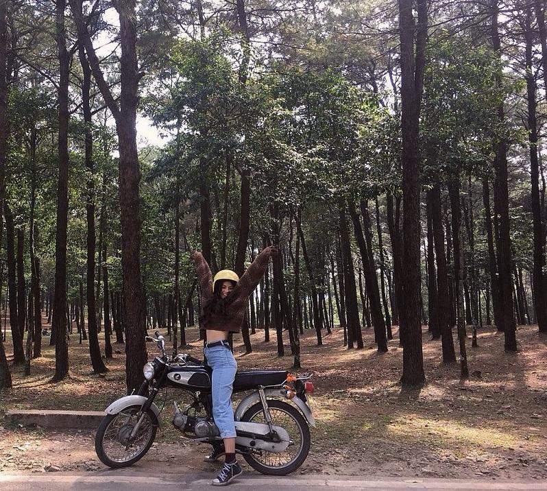 Đi Ba Vì bằng xe máy, dừng chân bên rừng cây