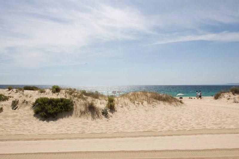 Bờ biển cát trắng tại làng Comporta Bồ Đào Nha