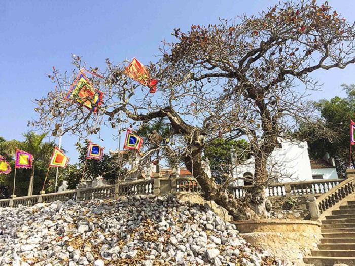 Khung cảnh đền thờ vua Quang Trung