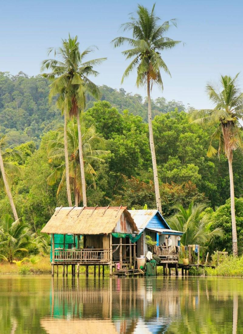 Khu rừng sinh thái nhiệt đới Campuchia