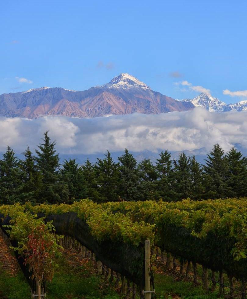 Thành phố Mendoza nằm ở phía đông dãy Andes