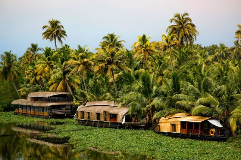 các homestay đậm chất dân dã tại Kerala