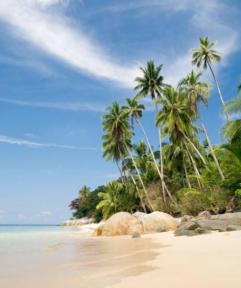Cảnh biển tại Malaysia với cát trắng và rặng phi lao