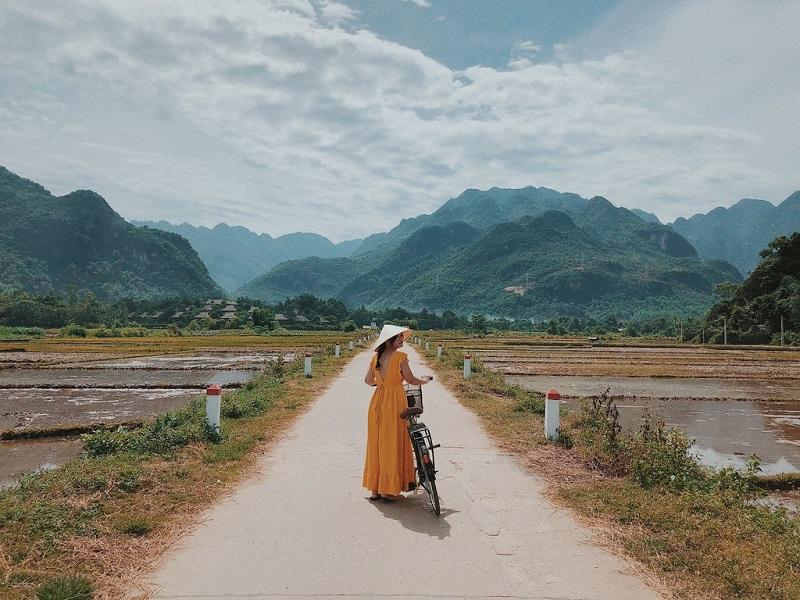 Đi xe đạp dạo quanh đồng lúa chín ở Hòa Bình