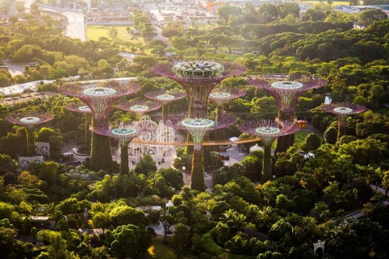 Công viên nhiều cây xanh tại Singapore