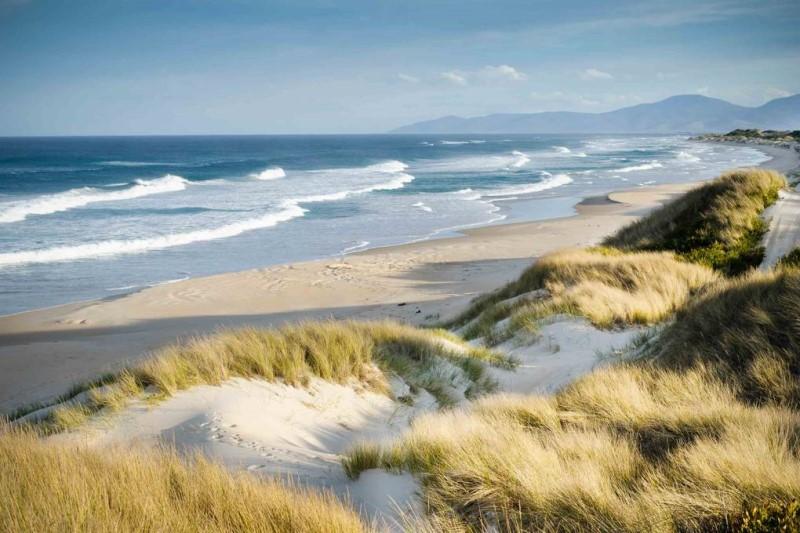Vùng đất Tasmania với những cánh đồng cỏ và biển