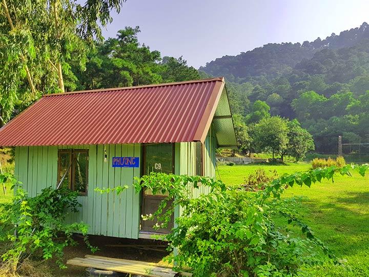 Căn nhà gỗ tại rừng thông với đầy đủ tiện nghi