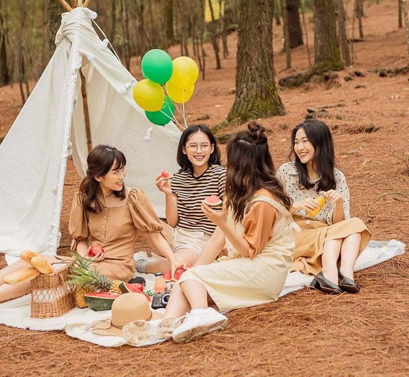 Trải thảm picnic cắm trại ở rừng thông