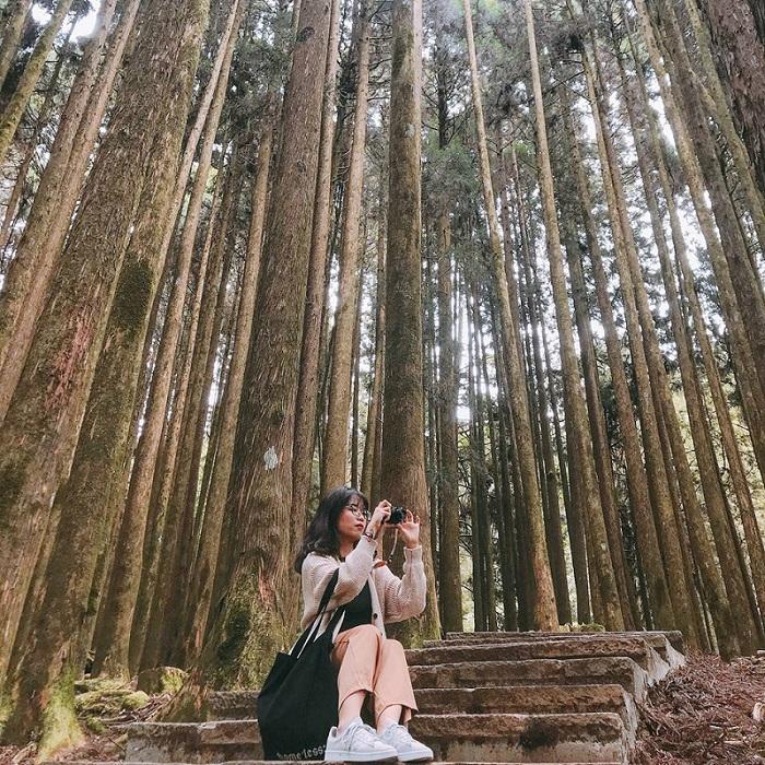 Cô gái trong khu du lịch rừng alishan đài loan