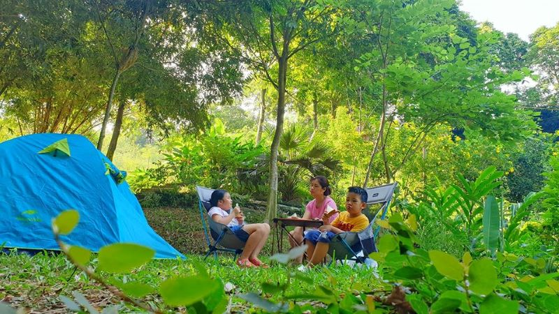 Không gian ngập tràn cây xanh thích hợp cho các gia đình có trẻ nhỏ