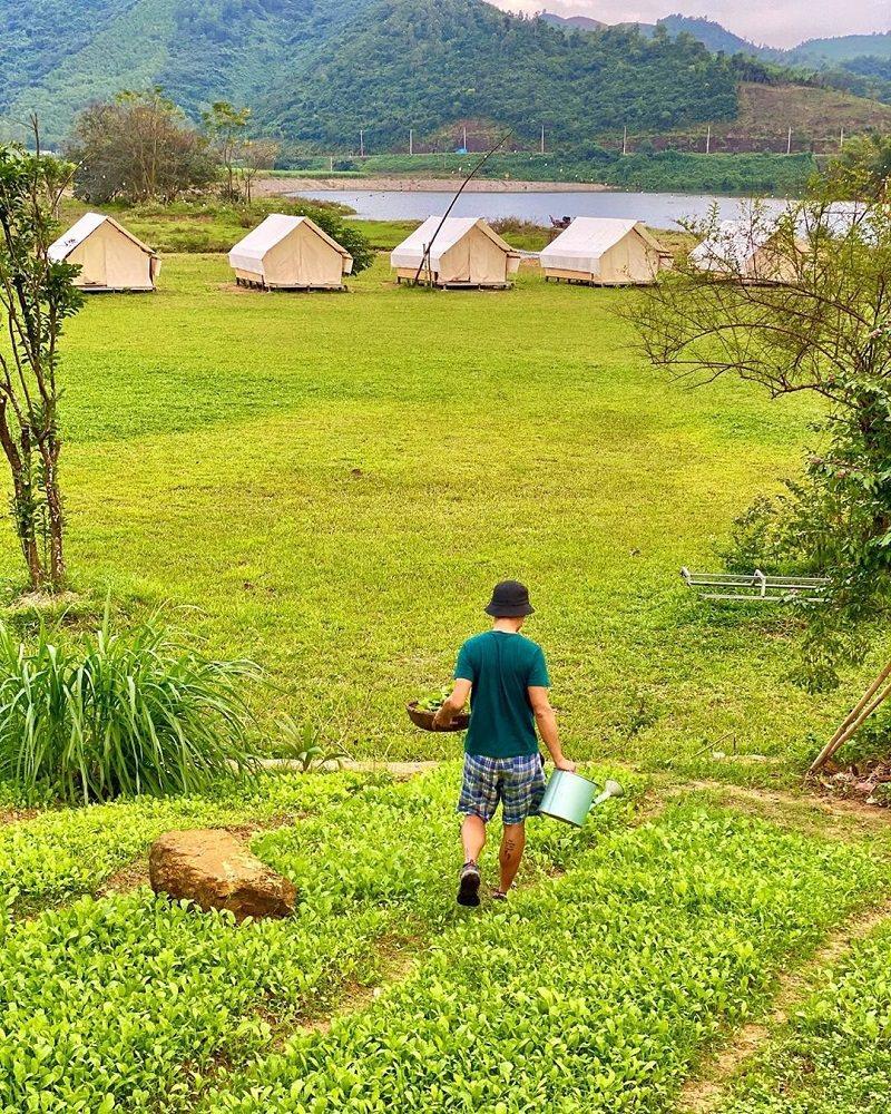 Không gian cỏ xanh mênh mang ở khu cắm trại Yen Retreat