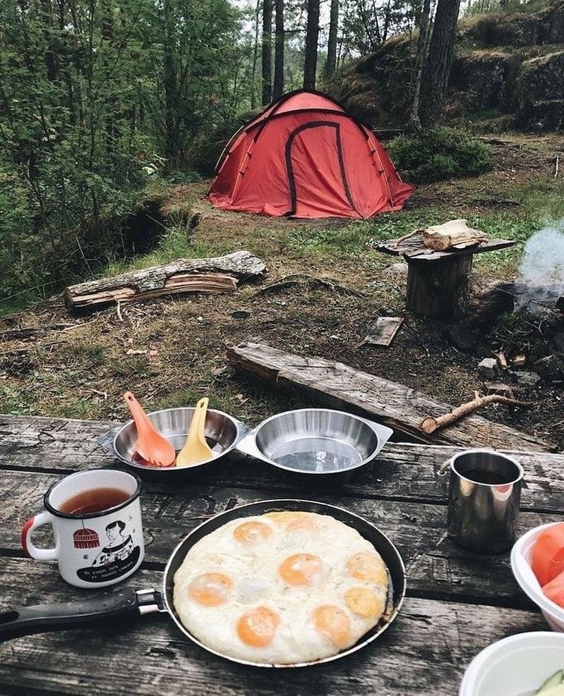 Dựng lều trại và tổ chức ăn uống trong rừng