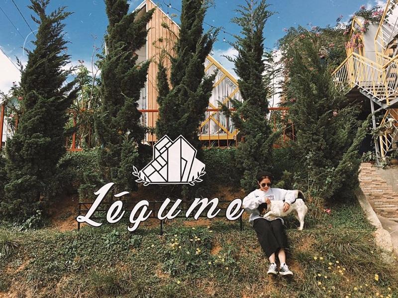 Không gian cây cối thoáng đãng ở Legume homestay Đà Lạt