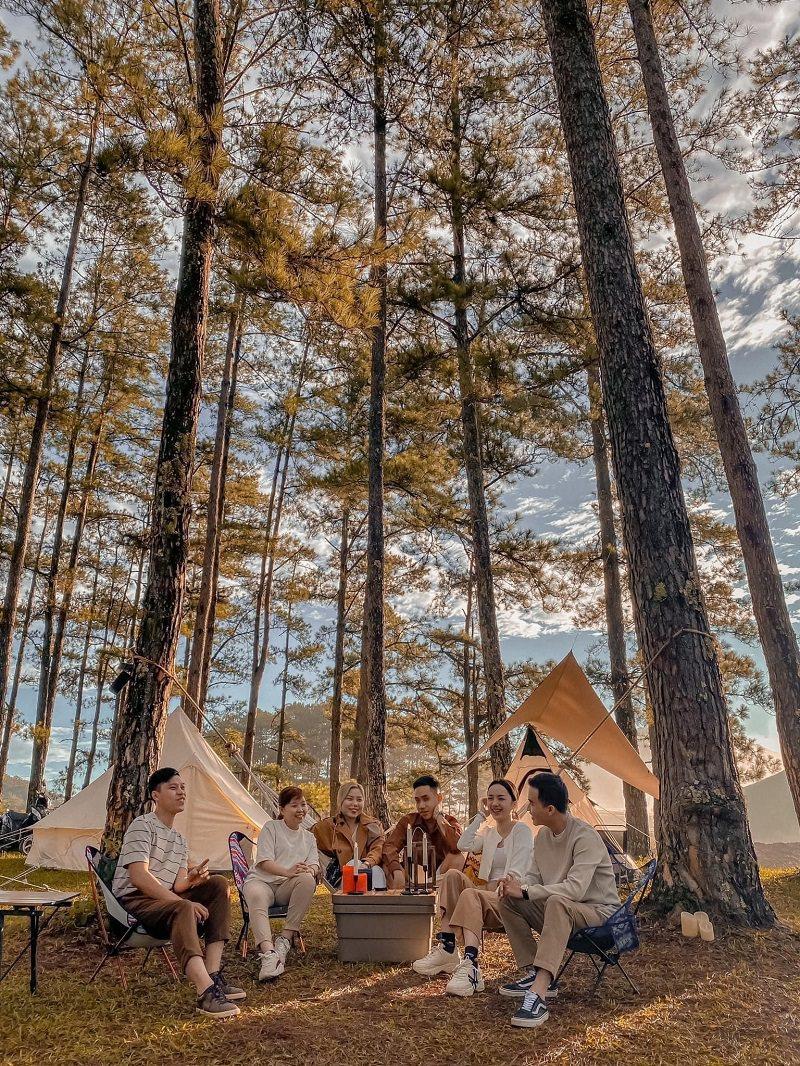 6 người đang ngồi trò chuyện trong khu cắm trại từng thông đà lạt