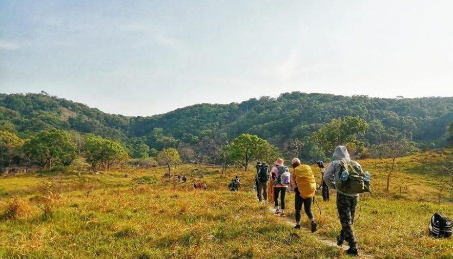 Đường đi treeking ở vườn quốc gia Núi Chúa
