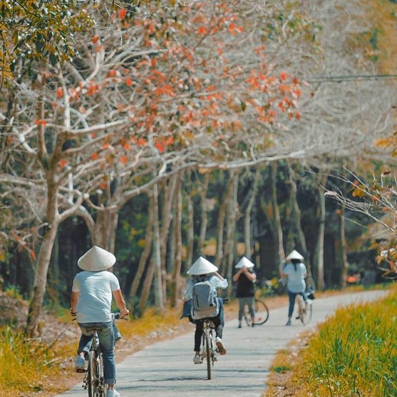Đi xe đạp trong rừng Nam Cát Tiên
