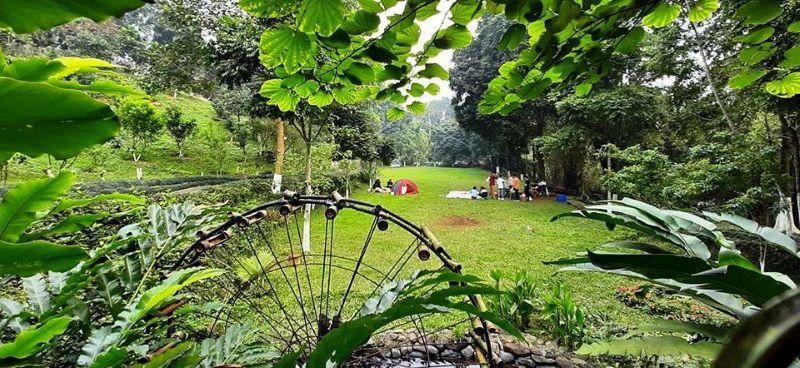 Không gian ngập tràn cây xanh tại Sơn Tinh Camp 2