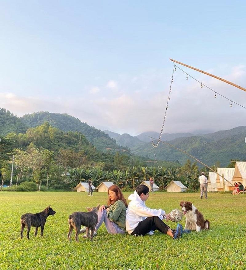 Chơi đùa với những chú cún ở khu cắm trại