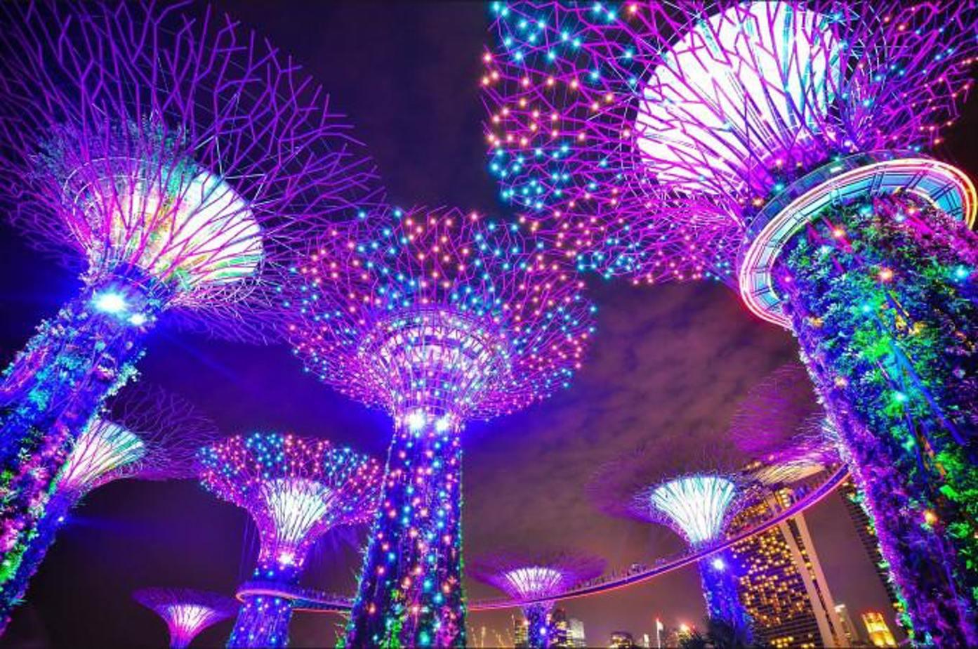 Khu vườn ánh sáng về đêm supertree grove