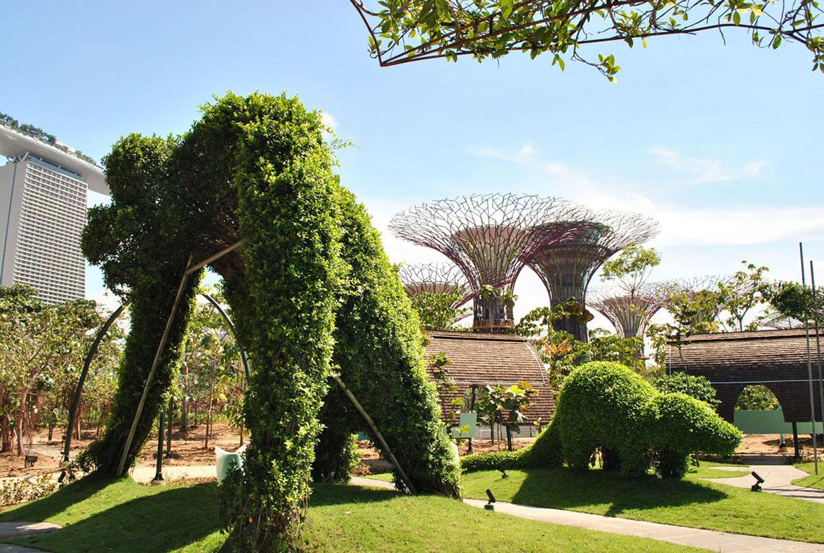 Khu vườn xanh tại gardens By the Bay