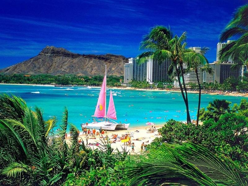 Bãi biển xanh ngắt trải dài ở Waikiki