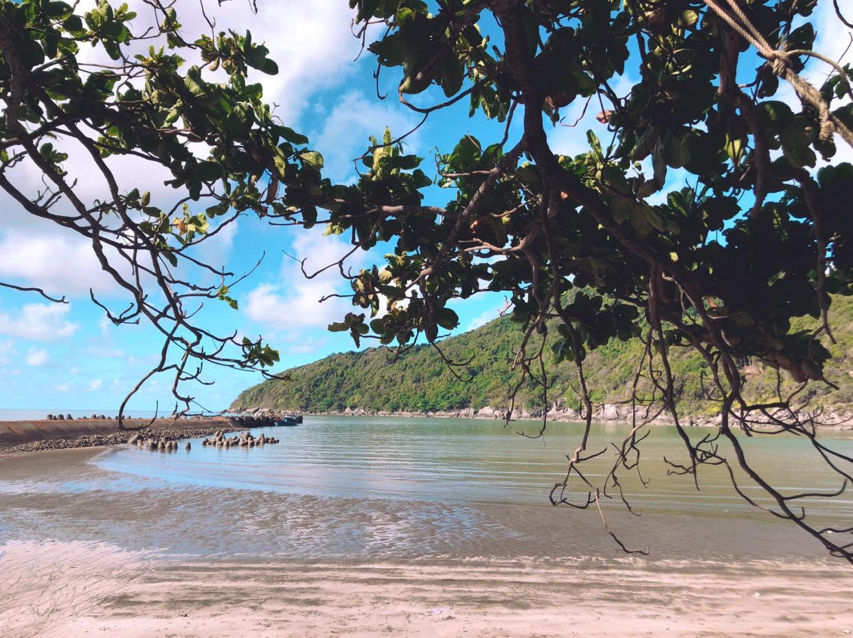 Nhìn từ bờ biển ra xa là hòn đảo rợp bóng cây xanh, nước biển trong veo