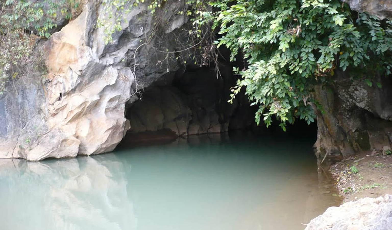 Ngoài cửa hang Thẩm Tét Toòng nước dâng cao, trên vách hang mọc nhiều cây xanh