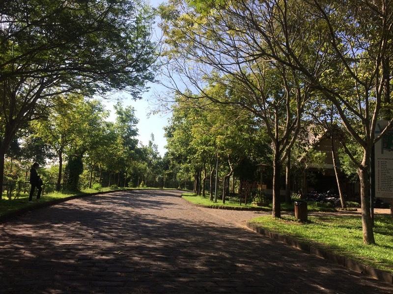 đường đi đến thác Giang Điền