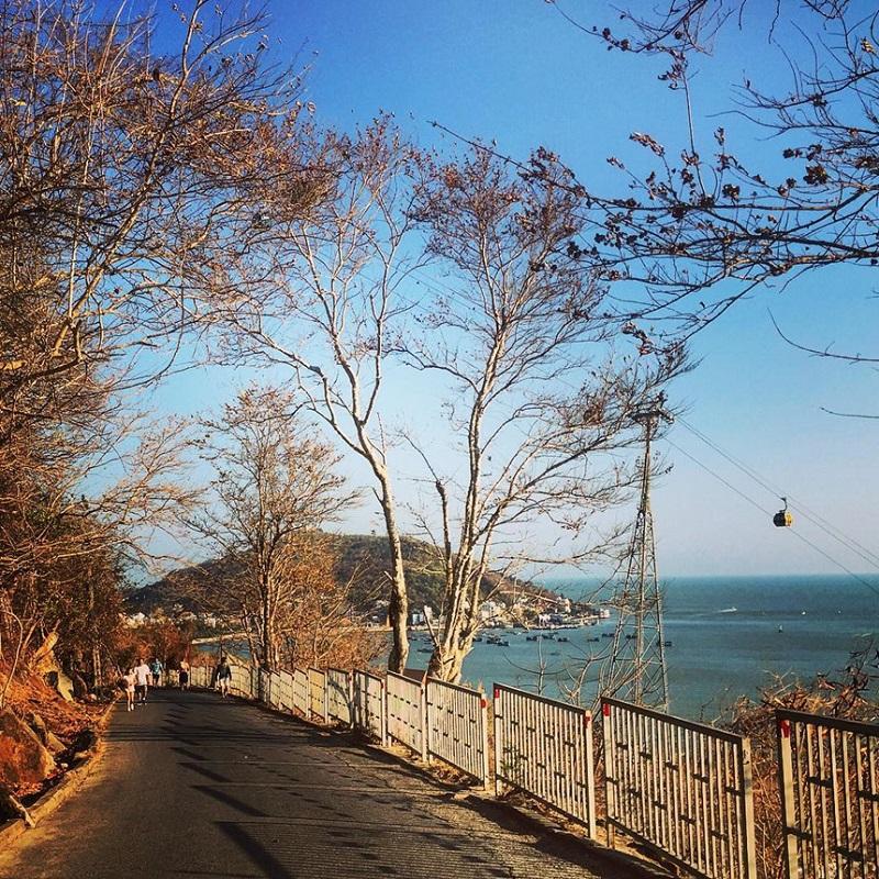Con đường ở rừng quốc gia Bình Châu nhìn ra biển